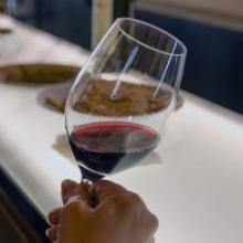 дегустация вин из Новой Зеландии
